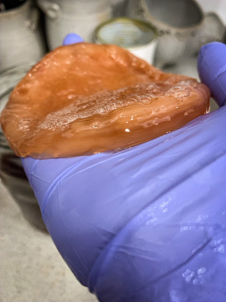 Scoby eli  Symbiotic culture Of Bacteria and Yeast