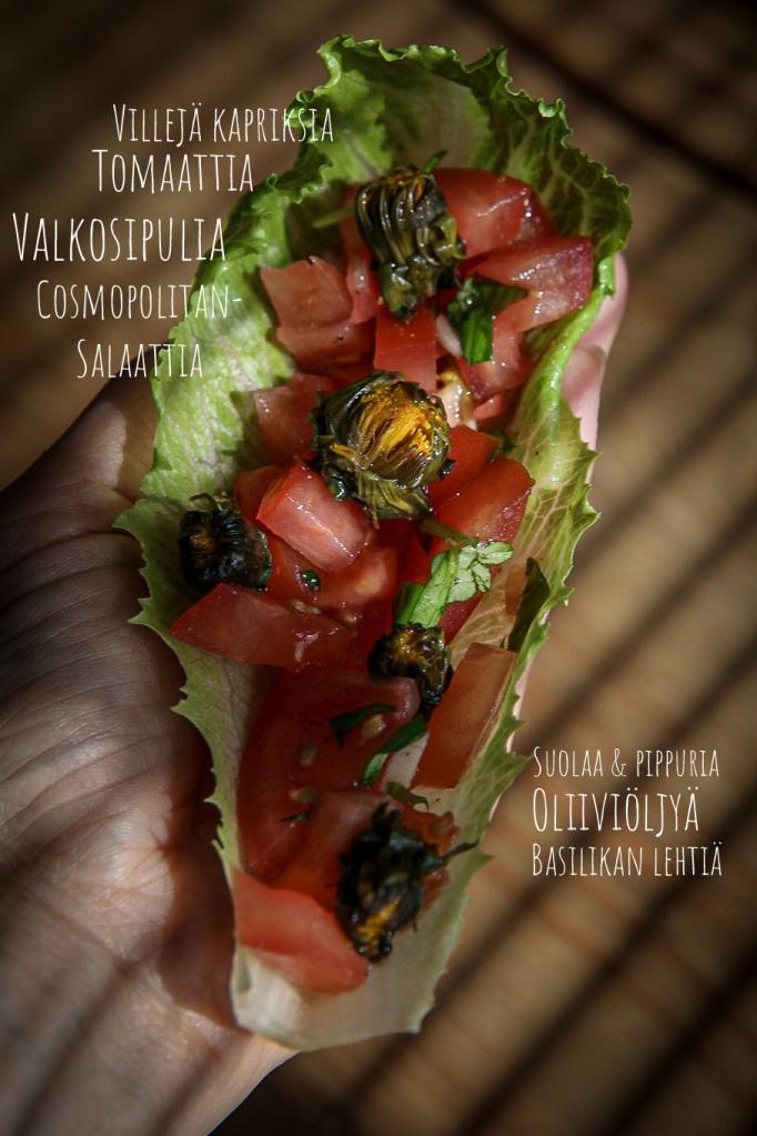 Tomaattisalaatti villiyrttikapristen kanssa